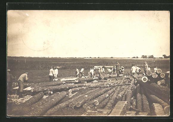 AK Forstarbeiter beim Holz sägen