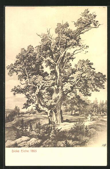 AK Dicke Eiche 1865