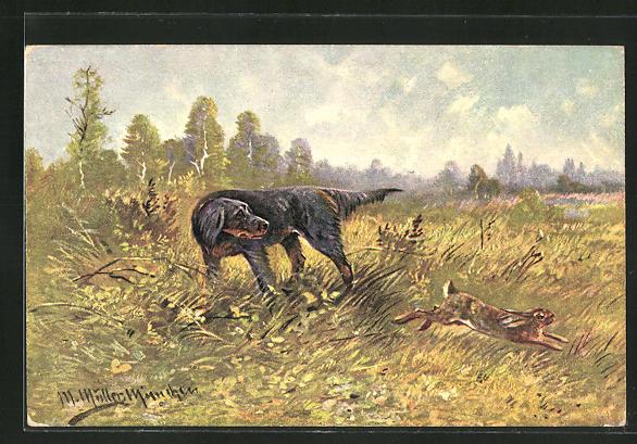 Künstler-AK M. Müller jun.: Jagdhund schaut auf vorbei springenden Hasen