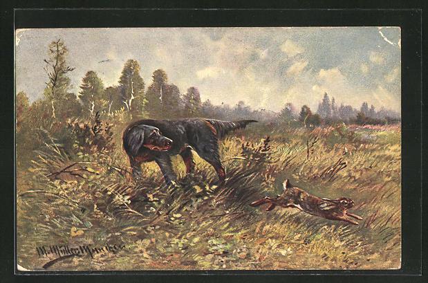 Künstler-AK M. Müller jun.: Jagdhund schaut auf einen flüchtenden Hasen