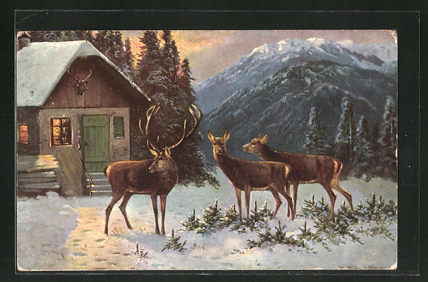 Künstler-AK M. Müller jun.: Hirsch mit Hirschkühen an einem winterlichen Haus