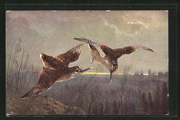 Künstler-AK M. Müller jun.: über den Bäumen fliegende Vögel