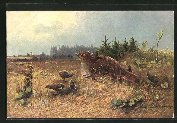Künstler-AK M. Müller jun.: Vogelfamilie im Gras
