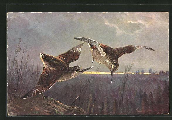 Künstler-AK M. Müller jun.: zwei fliegende Vögel über den Bäumen