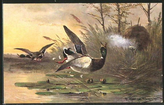 Künstler-AK M. Müller jun.: Jäger beim Abschuss einer Ente