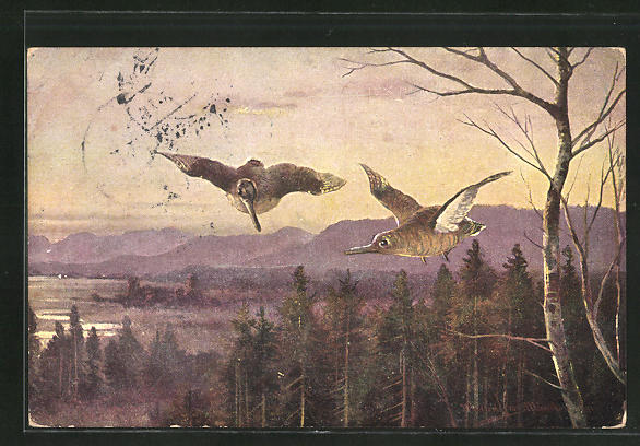 Künstler-AK M. Müller jun.: fliegendes Federwild