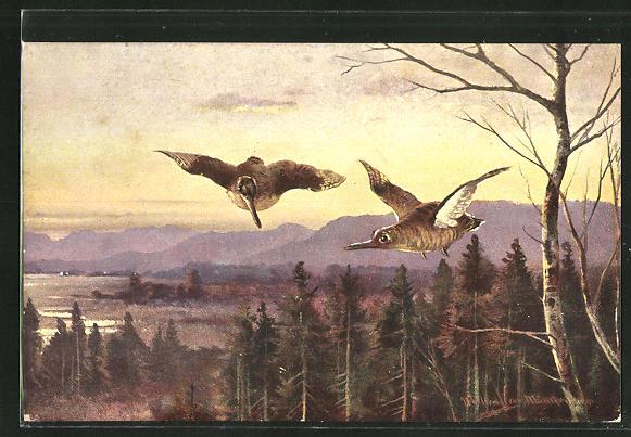 Künstler-AK M. Müller jun.: Federwild über Bäume fliegend