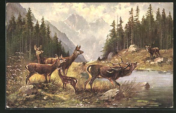 Künstler-AK M. Müller jun.: Rehe und röhrender Hirsch am Wasser