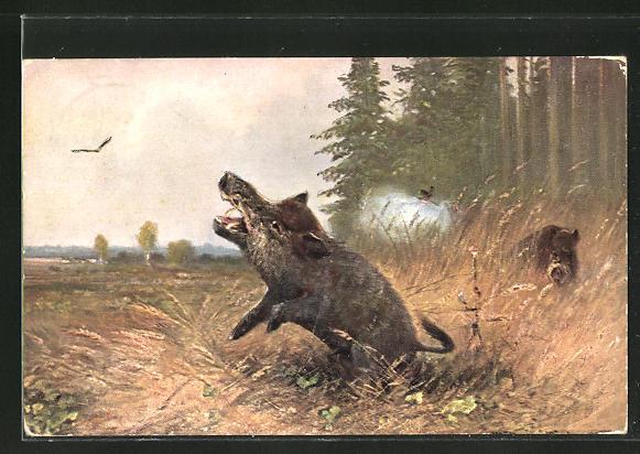 Künstler-AK M. Müller jun.: Jäger beim Abschuss eines Wildschweins
