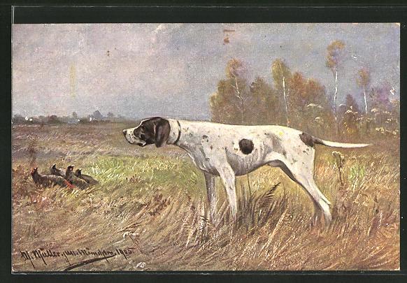 Künstler-AK M. Müller jun.: Jagdhund schaut nach Fasanen