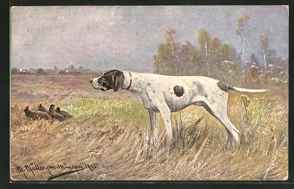 Künstler-AK M. Müller jun.: Jagdhund nach Fasanen schauend