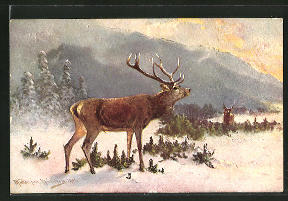 Künstler-AK M. Müller jun.: Hirsch in winterlicher Landschaft