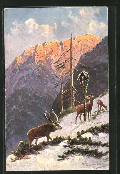 Künstler-AK M. Müller jun.: Hirsch und Hirschkühe an einem schneebedeckten Hang