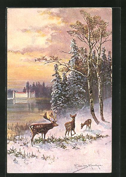 Künstler-AK M. Müller jun.: Hirsch und Hirschkühe im Schnee