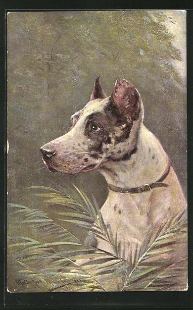 Künstler-AK M. Müller jun.: Profil eines Hundes 0