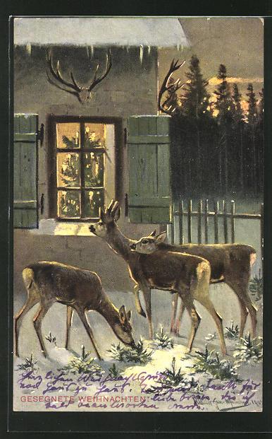 Künstler-AK M. Müller jun.: Rehe an einem weihnachtlichen Haus