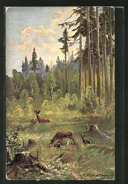 Künstler-AK M. Müller jun.: Rehe auf einer Waldlichtung