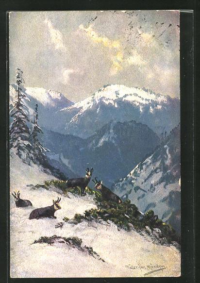 Künstler-AK M. Müller jun.: Gemsen in winterlicher Landschaft