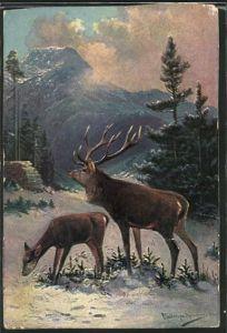 Künstler-AK M. Müller jun.: Hirsch und Hirschkuh in winterlicher Landschaft
