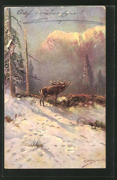 Künstler-AK M. Müller jun.: röhrender Hirsch im Winterwald 0