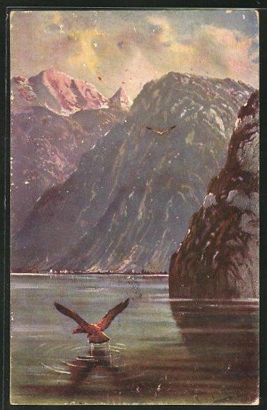Künstler-AK M. Müller jun.: Raubvogel übern See
