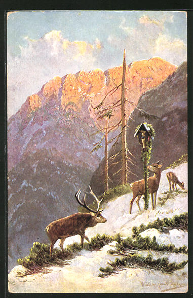 Künstler-AK M. Müller jun.: Hirsch mit Hirschkühen am winterlichen Berghang