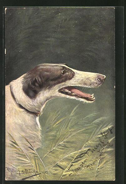 Künstler-AK M. Müller jun.: Profil eines Hundes