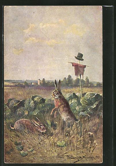 Künstler-AK M. Müller jun.: Hasen beim Kohlfressen
