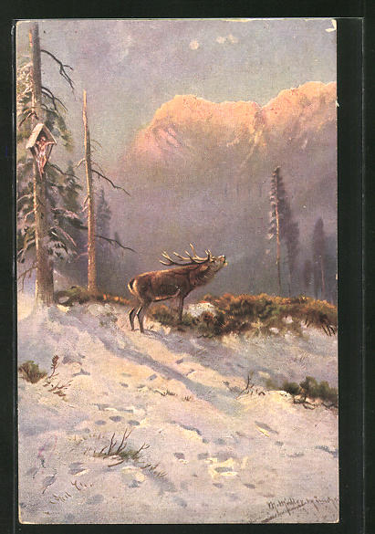 Künstler-AK M. Müller jun.: röhrender Hirsch im Winterwald