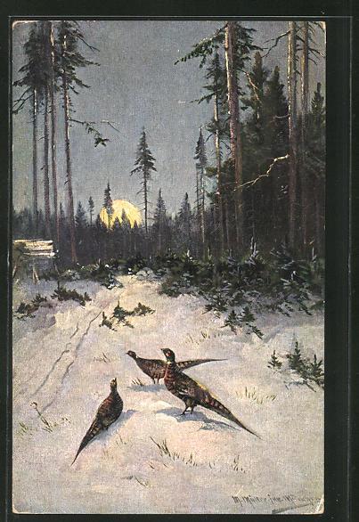 Künstler-AK M. Müller jun.: Fasanen im Schnee