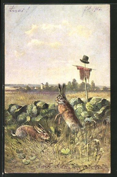 Künstler-AK M. Müller jun.: Hasen fressen im Kohlfeld
