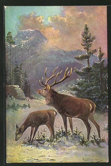 Künstler-AK M. Müller jun.: Hirsch mit Hirschkuh im winterlichen Wald
