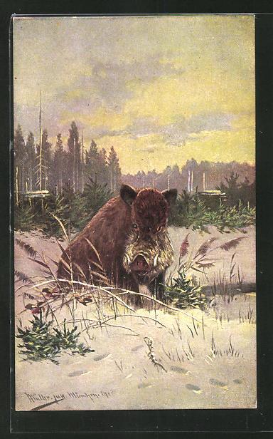 Künstler-AK M. Müller jun.: Wildschwein in winterlicher Landschaft