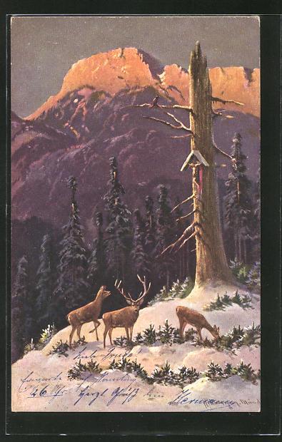 Künstler-AK M. Müller jun.: Hirsch mit Hirschkühen im winterlichen Wald
