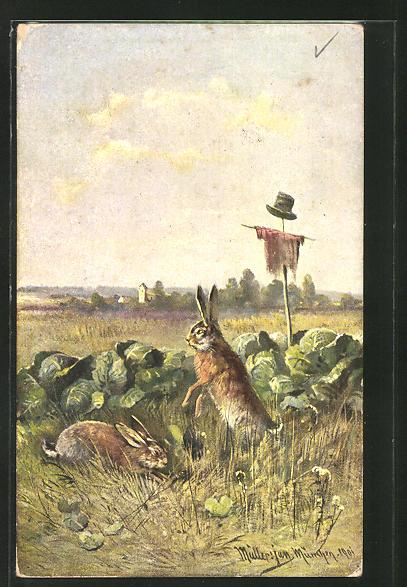 Künstler-AK M. Müller jun.: Hasen fressen auf einem Kohlfeld