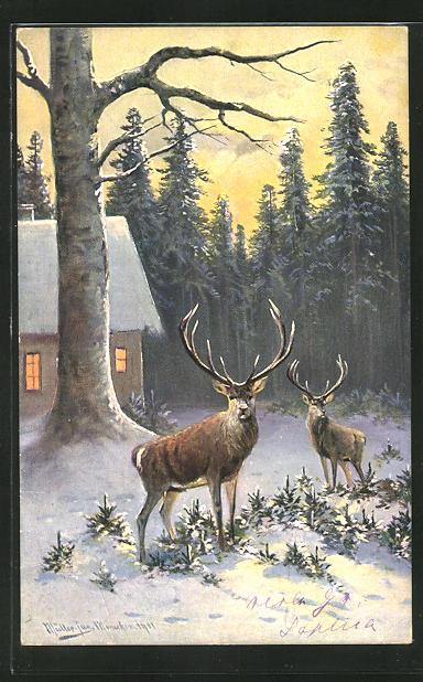 Künstler-AK M. Müller jun.: Hirsche an einem schneebedeckten Haus