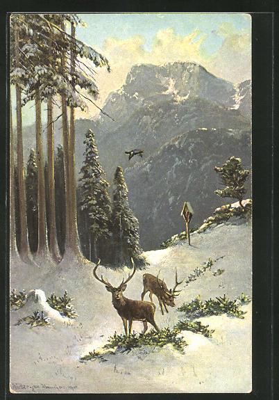 Künstler-AK M. Müller jun.: Hirsche im winterlichen Wald 0