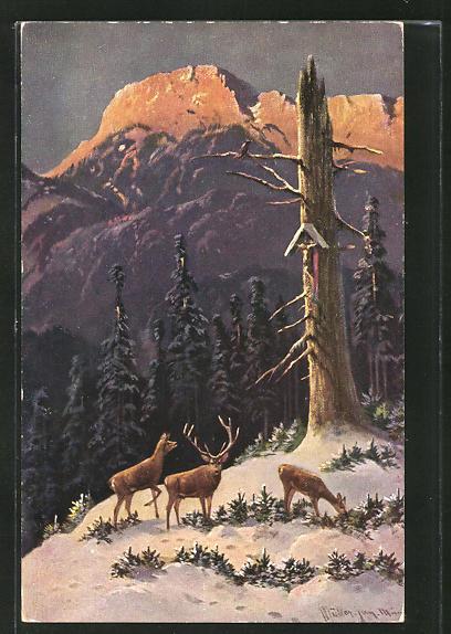 Künstler-AK M. Müller jun.: Hirsch mit zwei Hirschkühen im winterlichen Wald