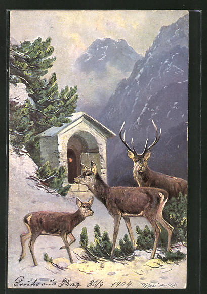 Künstler-AK M. Müller jun.: Hirschfamilie in winterlicher Landschaft