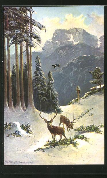 Künstler-AK M. Müller jun.: zwei Hirsche in winterlicher Landschaft