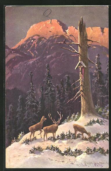 Künstler-AK M. Müller jun.: ein Hirsch mit zwei Hirschkühen im winterlichen Wald