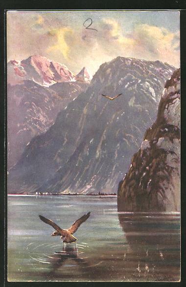 Künstler-AK M. Müller jun.: Greifvogel beim Raubzug auf dem Wasser