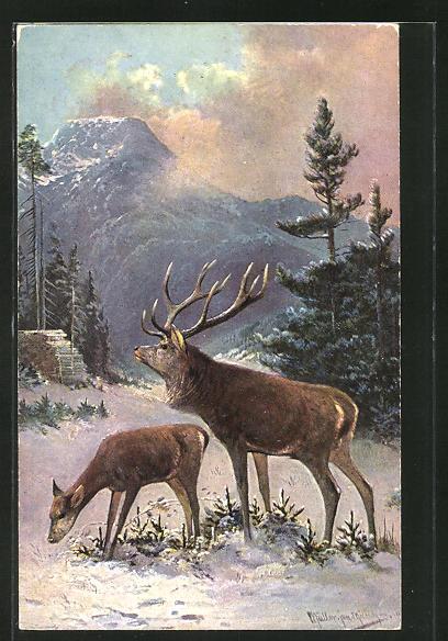 Künstler-AK M. Müller jun.: Hirsch und Hirschkuh im winterlichen Wald
