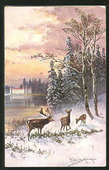 Künstler-AK M. Müller jun.: Hirsch und zwei Hirschkühe im Winter an einem See