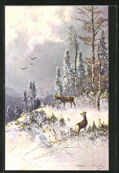 Künstler-AK M. Müller jun.: Rehe im winterlichen Wald