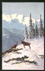 Künstler-AK M. Müller jun.: Hirsch und Hirschkuh auf winterlichen Berg