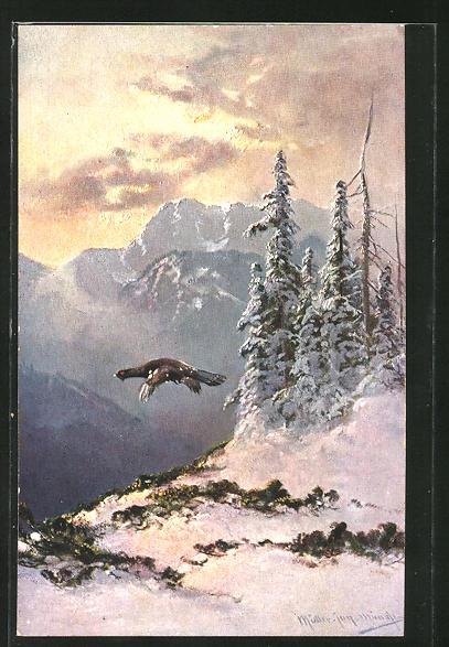 Künstler-AK M. Müller jun.: Auerhahn im Flug in winterlicher Landschaft