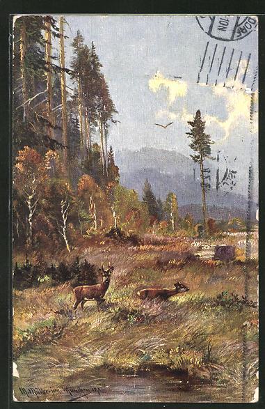 Künstler-AK M. Müller jun.: Rehe auf einer Wiese am See