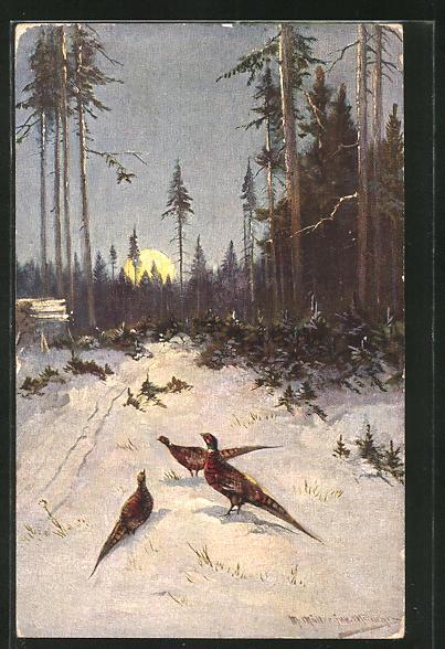 Künstler-AK M. Müller jun.: Fasane in winterlicher Landschaft