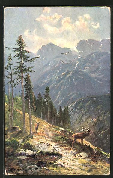 Künstler-AK M. Müller jun.: Hirsch mit Hirschkuh auf einem Berg